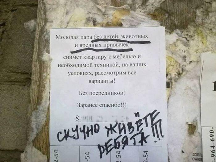 26 интересных кадров 12.11.2014