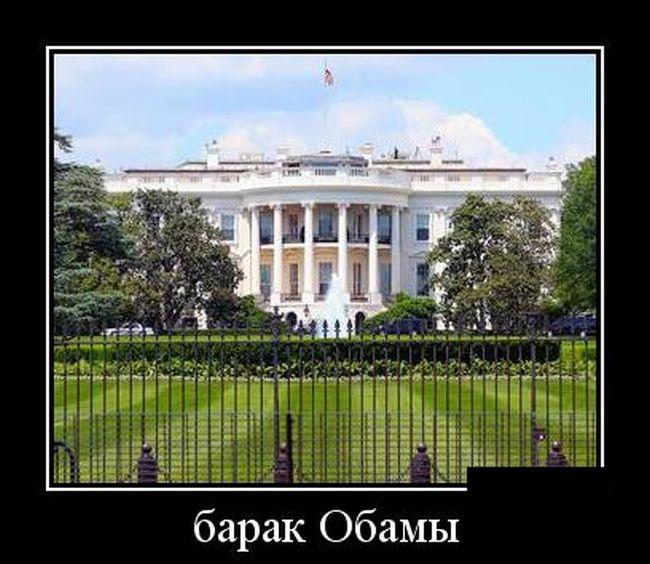 Демотиваторы 14.11.2014 (30 фото)