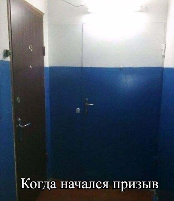Веселые картинки 18.11.2014 (31 фото)