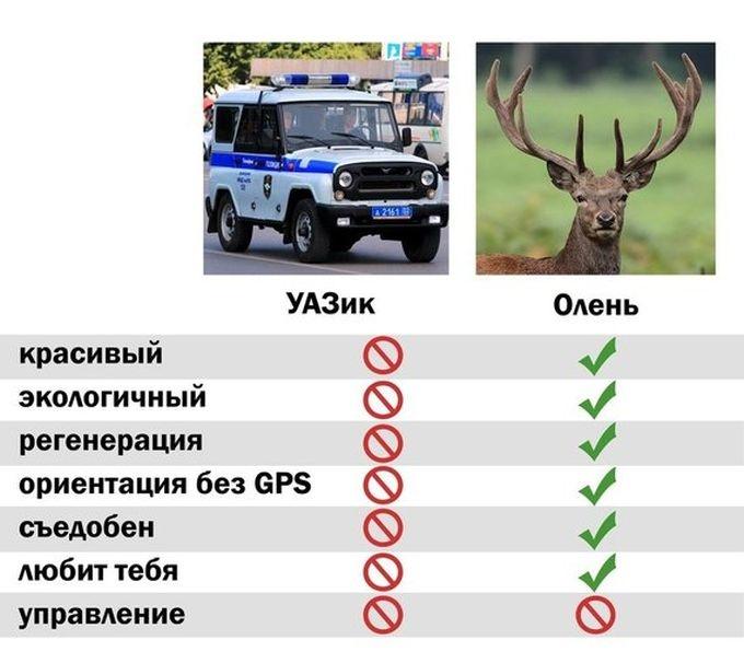 Полицейские Крайнего Севера могут пересесть на служебных оленей (2 фото)
