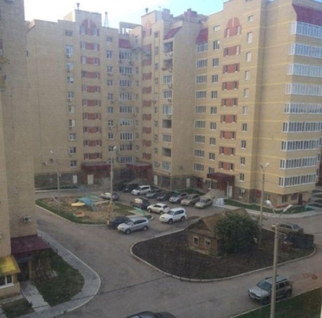 25 необычных кадров 21.11.2014