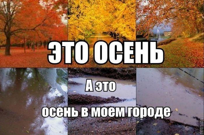 Веселые картинки 22.11.2014 (23 фото)