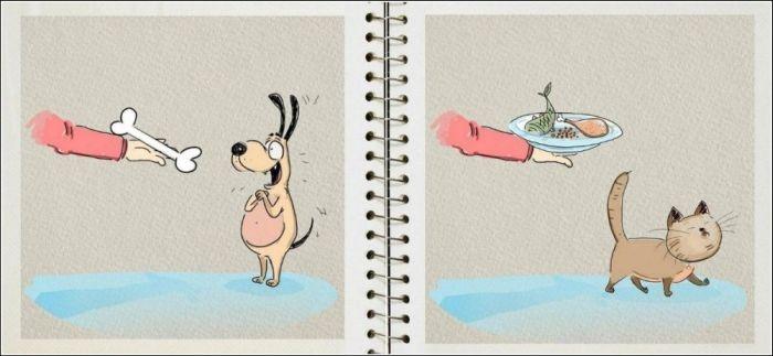 Отличия между собакой и кошкой от художника BirdBorn (6 картинок)
