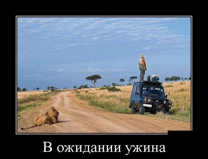 Демотиваторы 26.11.2014 (30 фото)
