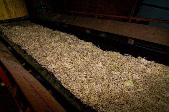 Фоторепортаж с завода по переработке сахарной свеклы (29 фото)