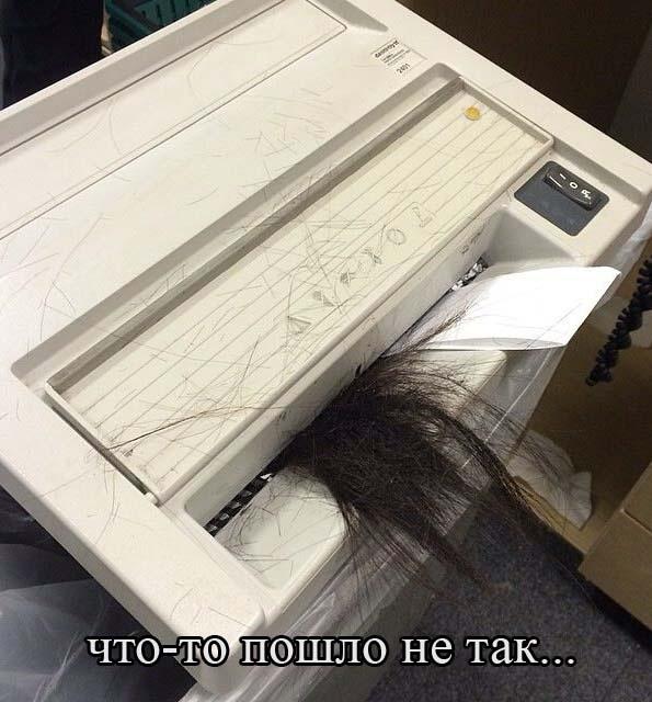 28 интересных кадра 29.11.2014