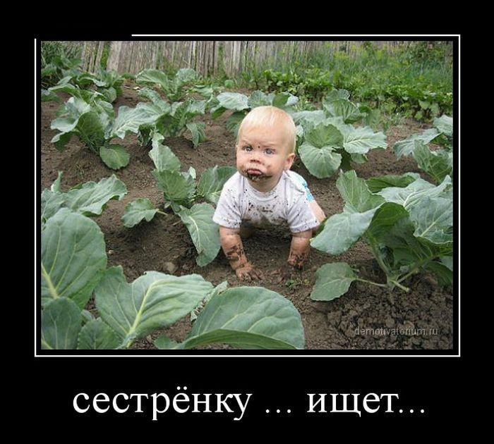 Демотиваторы 01.12.2014 (30 фото)