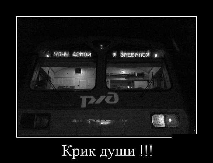 Демотиваторы 02.12.2014 (30 фото)