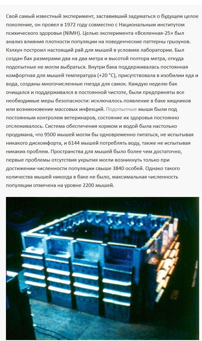 Интересный эксперимент «Вселенная-25» американского ученого Джона Кэлхуна (8 фото)