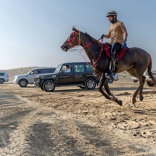 Фото из инстаграм 32-летнего принца Дубая Хамдана бин Мохаммеда (43 фото)