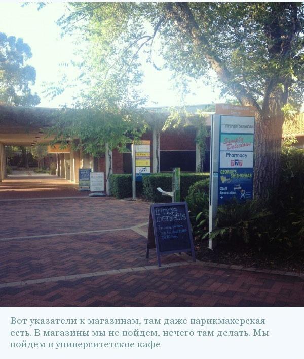 Фотоэкскурсия по одному из ВУЗов Австралии (25 фото)