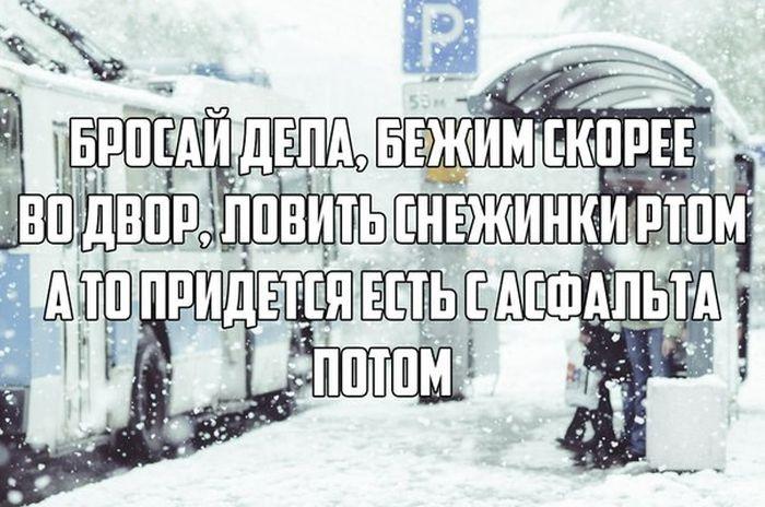 Веселые картинки 10.12.2014 (18 фото)