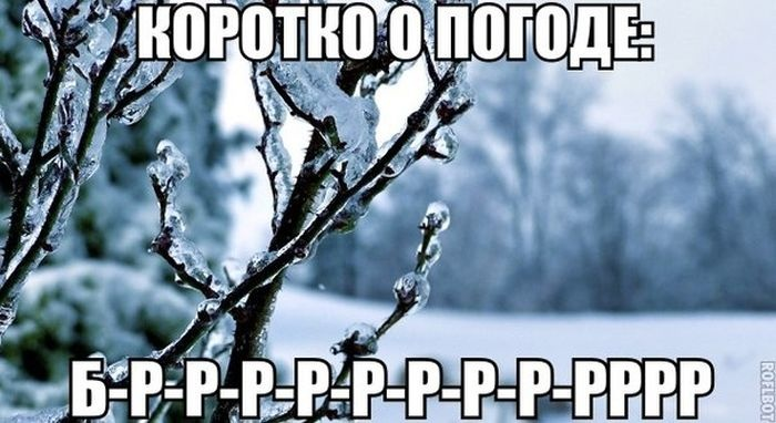 Веселые картинки 12.12.2014 (21 фото)