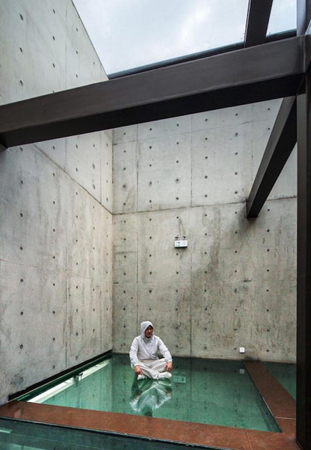 Дом со стеклянными полами и крышей (7 фото)