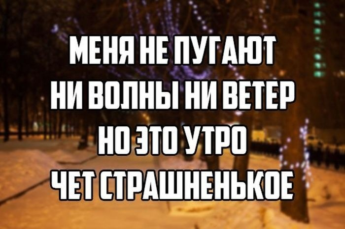 Веселые картинки 14.12.2014 (14 фото)