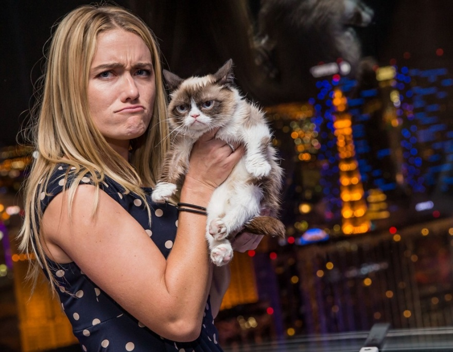 10 секретов успеха самого богатого кота в мире (11 фото)