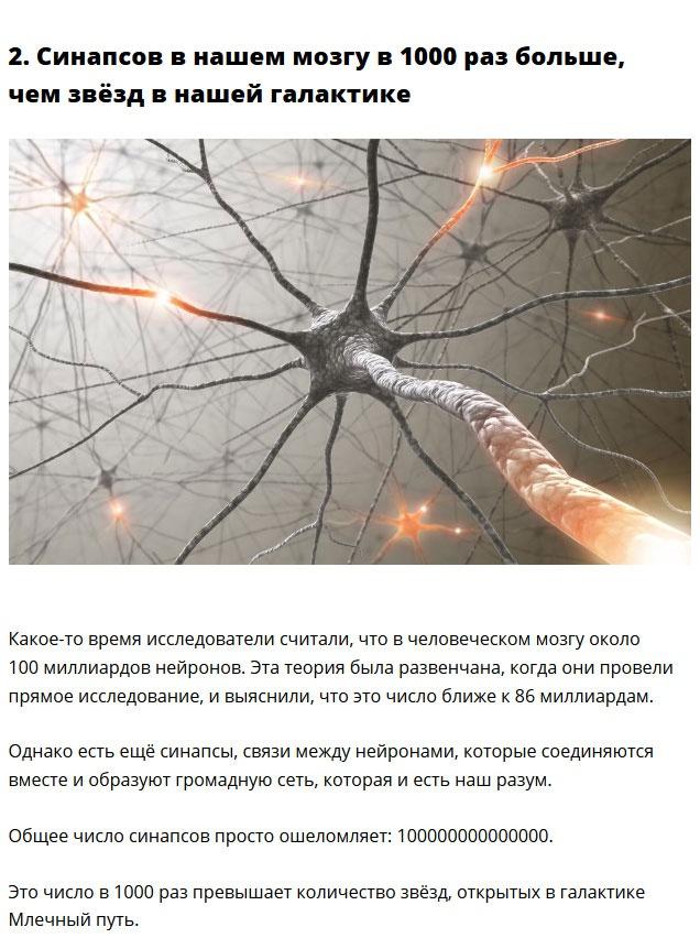 Очень удивительные факты о нашем организме (10 фото)