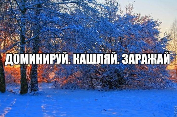 Приколы в картинках и фото 15.12.2014 (16 фото)