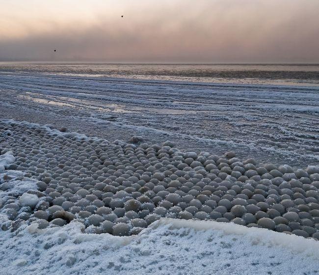 Таллин: удивительное природное явление на берегу Финского залива (5 фото)