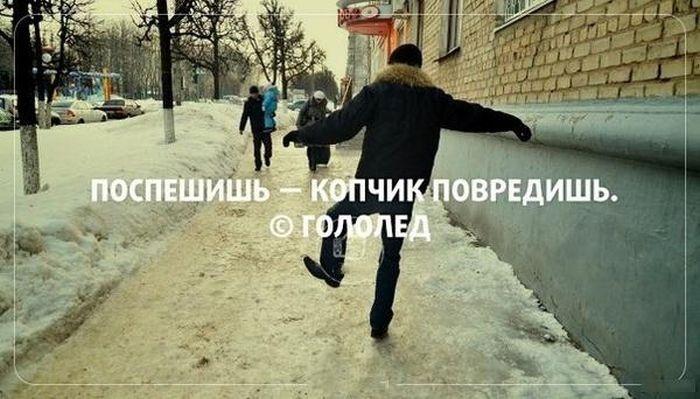 Веселые картинки 17.12.2014 (18 фото)