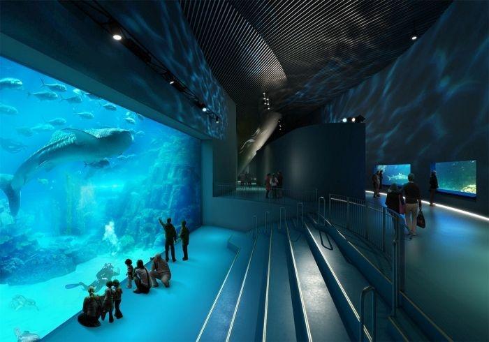 Дания: уникальный океанариум «Голубая планета» - дом для 20 000 рыб (17 фото)