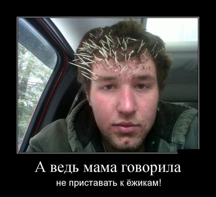 Демотиваторы 24.12.2014 (29 фото)