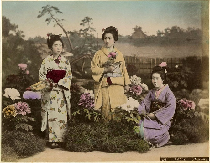 Япония в цвете (30 фото)
