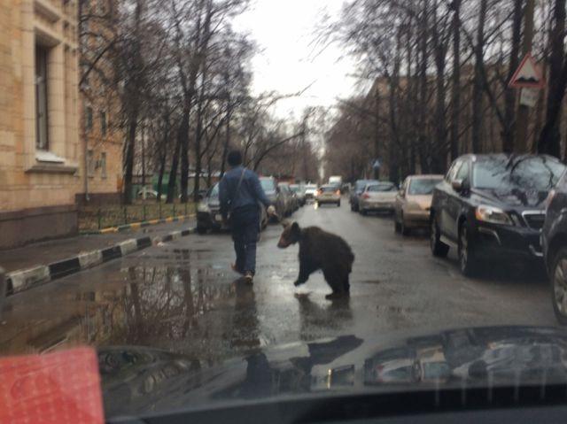 Из России с любовью (44 фото)