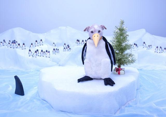 Рождественские открытки с собаками (10 фото)