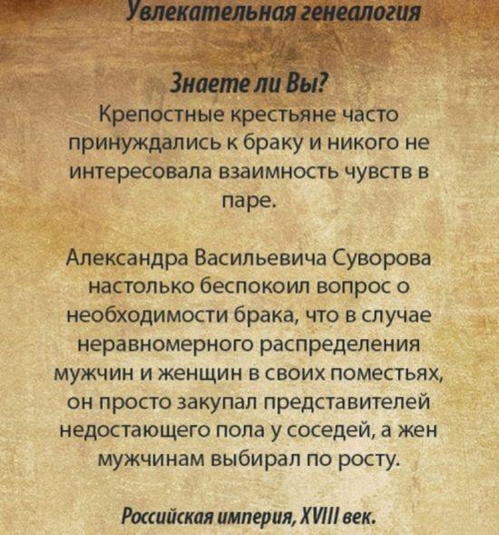Веселые картинки 06.01.2015 (21 картинка)