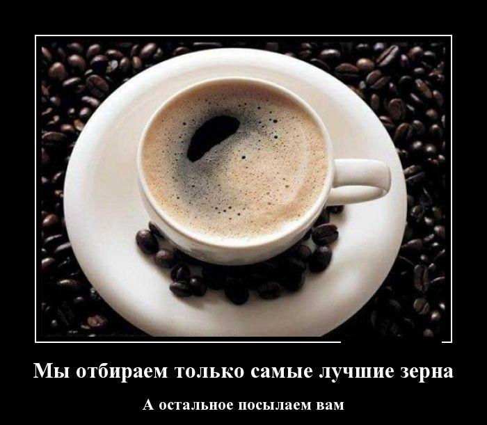 Демотиваторы 06 01 2015 30 фото
