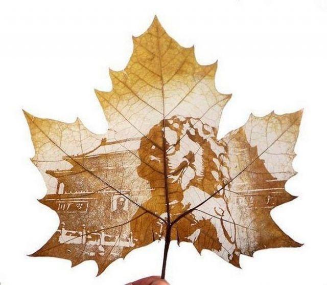 Рисунки на листьях клёна (19 фото)