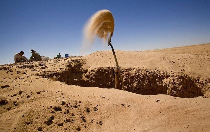Когда-то Сахара была зеленой (16 фото)