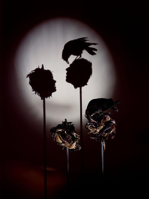 Искусство, выраженное в магии тени (20 фото)