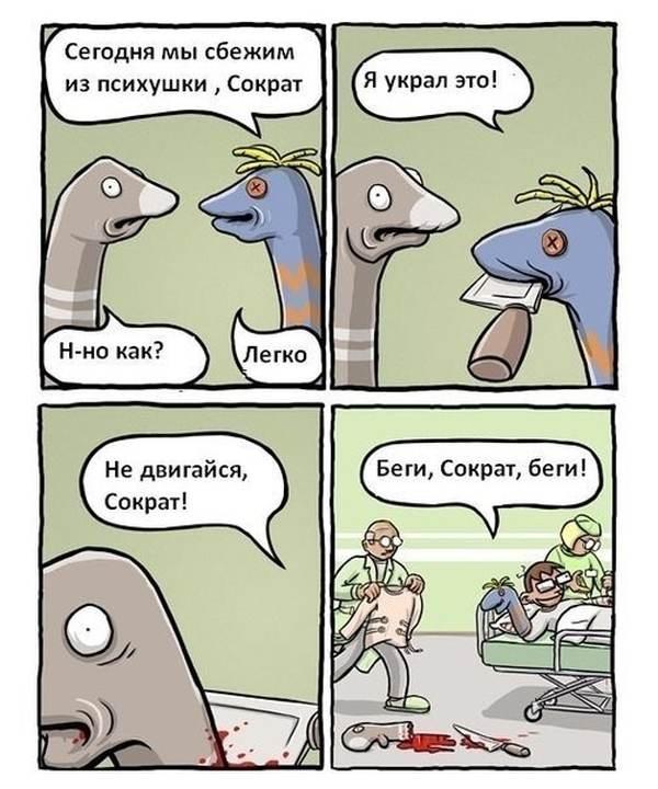 Смешные комиксы 13.01.2015 (15 картинок)