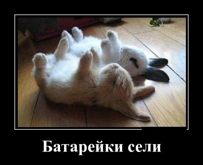 Позитивные демотиваторы 20.01.2015 (30 фото)