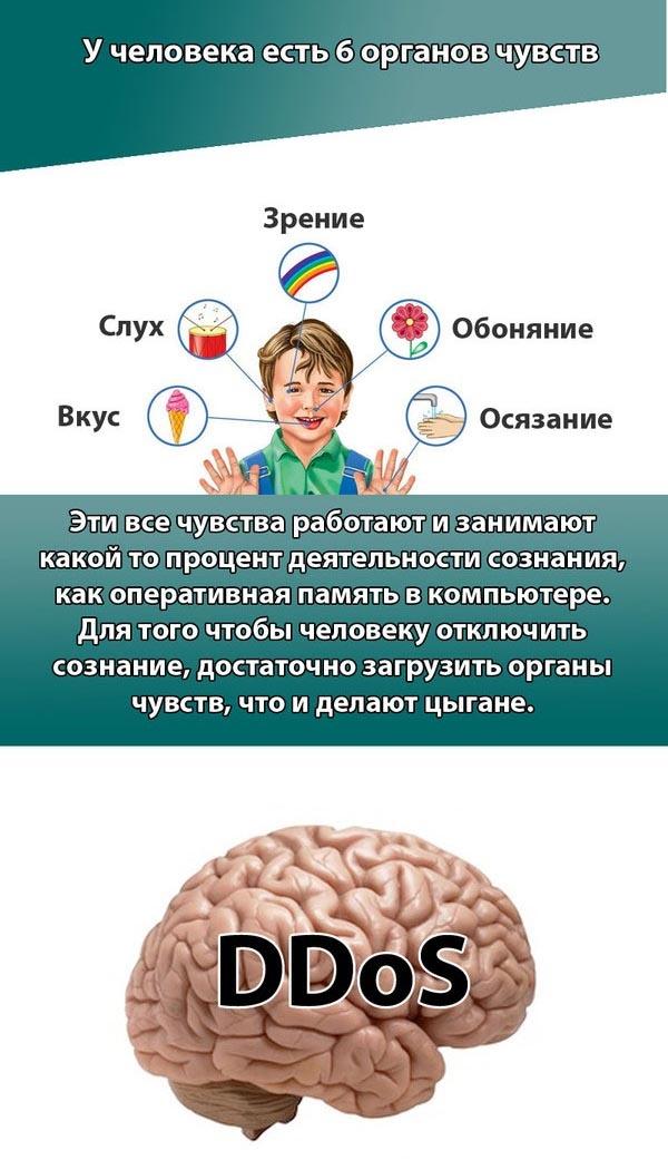 Цыганский гипноз