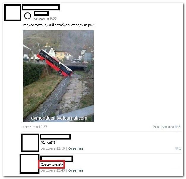Прикольные комменты из соц. сетей (30 картинок)