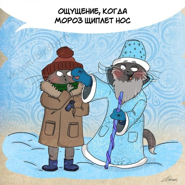 За что нам стоит любить зиму