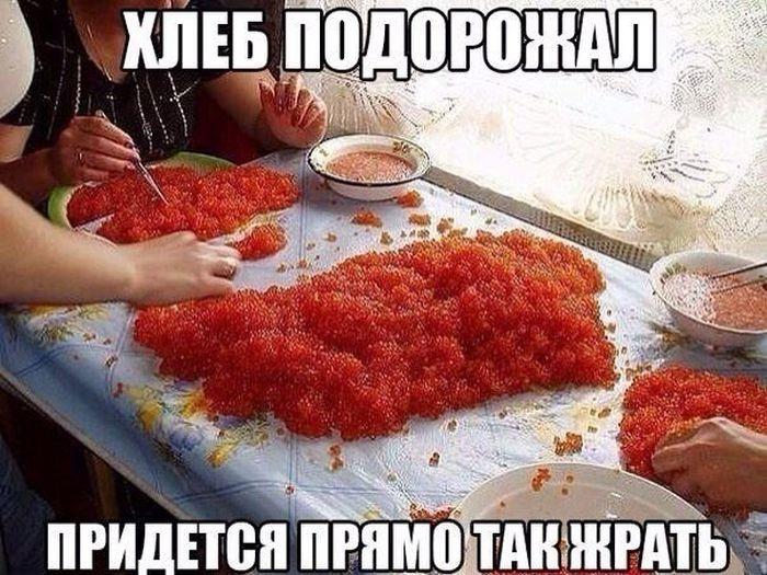 Забавные картинки и демотиваторы 26.01.2015 (95 фото)