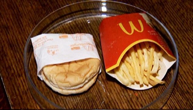 Чизбургер шестилетней выдержки (6 фото)