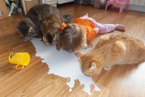 Дети и животные (15 фото)