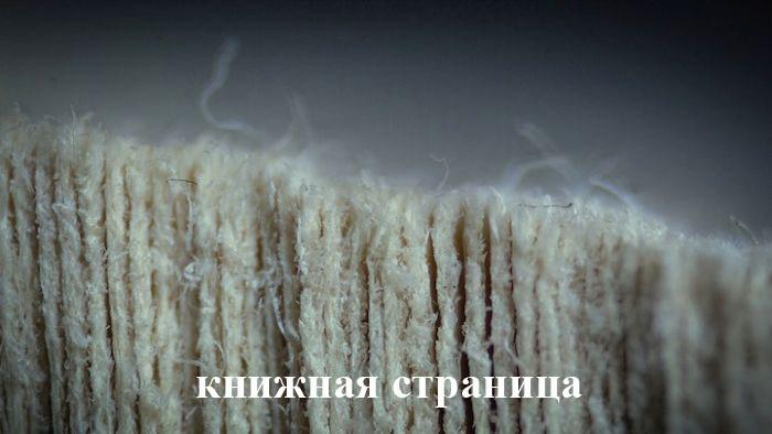 Подборка демотиваторов и прикольных фото (102 картинки)