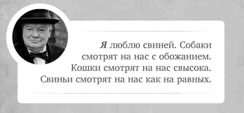 Лучшие цитаты Черчиля