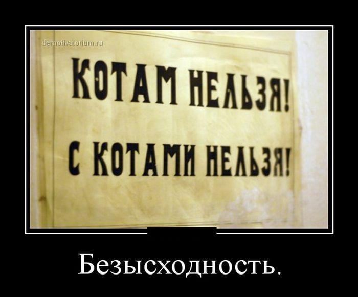 Подборка демотиваторов 12.02.2015 (29 картинок)