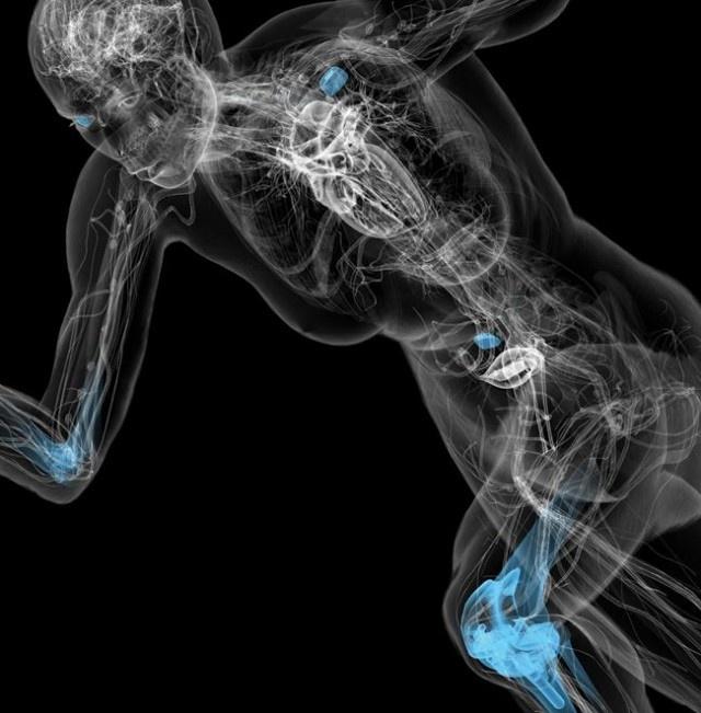 Удивительные факты о человеческом теле (3 фото+13 гифок)