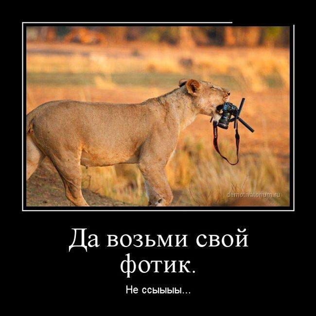 Подборка демотиваторов 20.02.2015 (30 картинок)