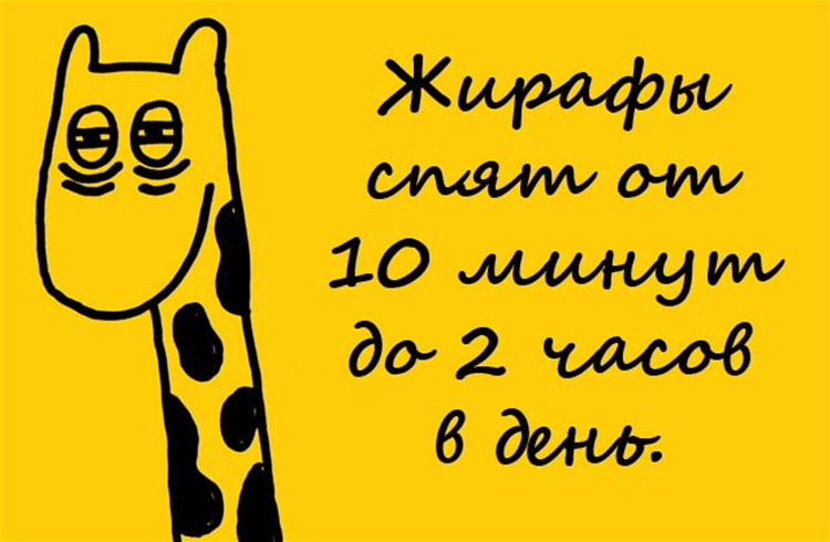 40 интересных фактов