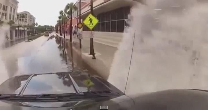 Водитель привлекает внимание пешеходов