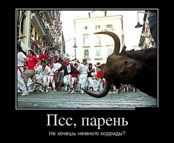 Подборка демотиваторов 04.03.2015 (29 картинок)